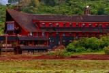 The ark front, Aberdare, Kenya