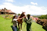 Aberdare country club horse riding, Kenya