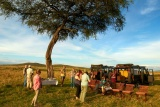 Sala's camp - bush sundowners, Maasai Mara, Kenya'
