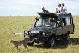 Game drive at Sala's Camp