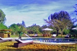 Mbweha camp lake nakuru swimming pool
