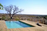 Pool simbavati hilltop lodge
