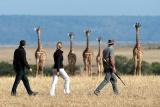 Bush walk, mara plains camp