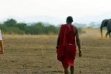 Bush Walk at Tortilis Camp