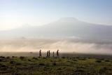 Tortilis Camp - bush walk - kilimanjaro