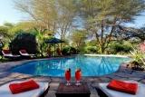 Tortilis Camp - swimming pool