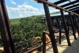 Rhino ridge safari lodge dining deck