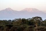 Finch hattons mt kilimanjaro view