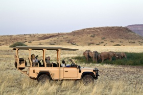 Game Drive at Desert Rhino Camp, Palmwag, Namibia