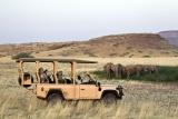 Game drive near Desert Rhino Camp