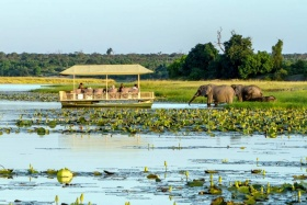 Skimmer Safari at Chobe Savanna Lodge