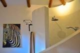 Indoor shower, arumeru river lodge