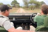 Game driving at tarangire safari lodge