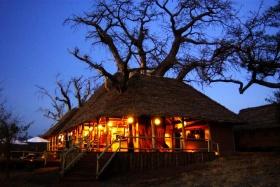 Tarangire Treetops at night
