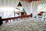 Luxury bed, manyara wildlife camp