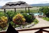 Pool view, manyara wildlife camp
