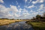 Ruaha River Lodge, set on the river bank