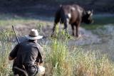 Buffalo seen on bush walk, Senalala
