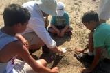 Taking casts of spoor at baobab ridge