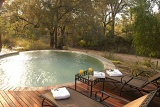Hoyo Hoyo Tsonga Lodge pool overlooking bushveld