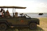 Muchenje Lodge safari