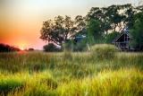 Kwando lebala sunrise