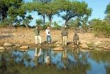Bush walk at Kings Camp