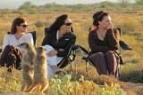 De Zeekoe Meerkat Safari