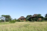 nThambo Tree Houses