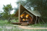 Plains Camp Rhino Walking Safaris
