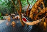 Kosi forest lodge - main deck