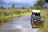Nxabega okavango tented camp watery game drive