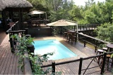 Tiered pool decks, Madikwe River Lodge