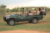 Safari game drive, Tau Game Lodge
