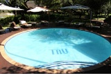 Inviting pool, Tau Game Lodge