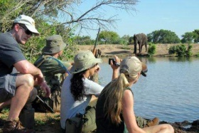 On foot with elephant at watering hole