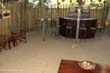 Goliath Safaris bar
