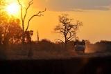 Tafika sunset drive