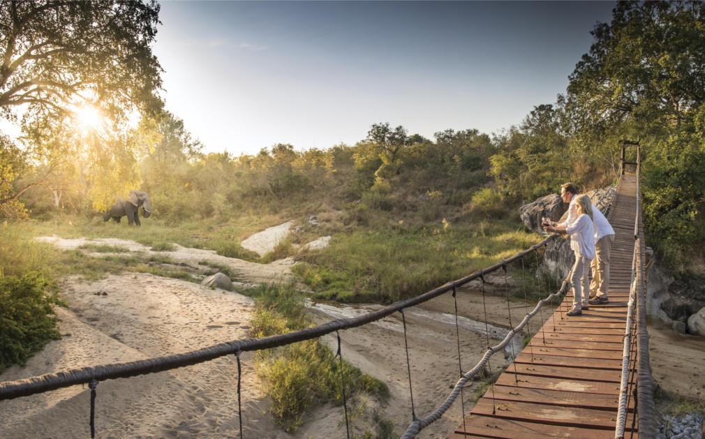 Dulini Romantic Rope Bridge by
