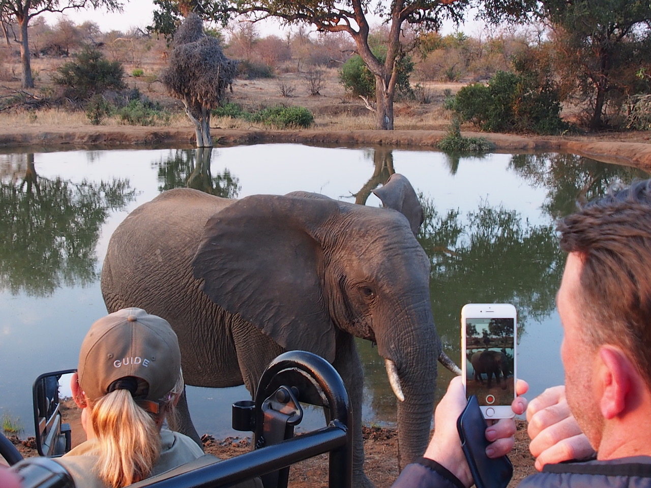 Here's How to Safari With Family in Africa In Pictures - #10 is My Favourite.