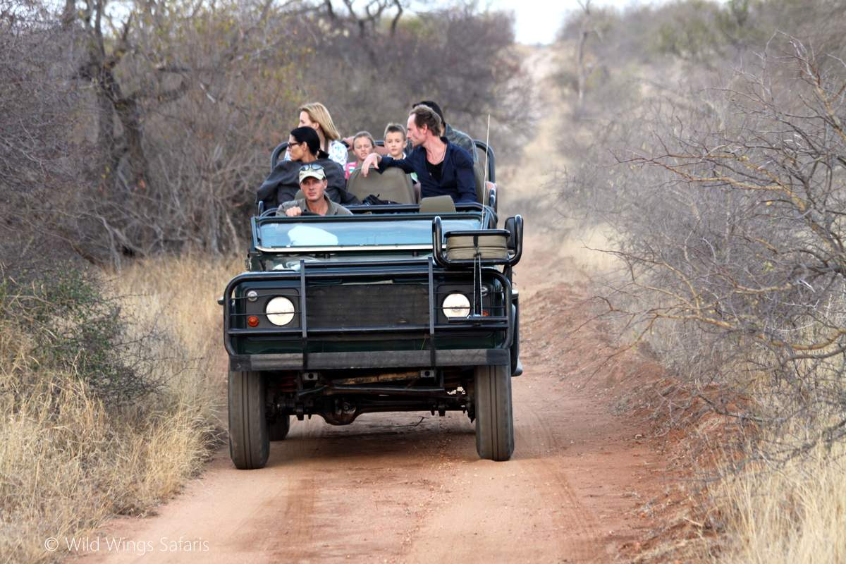 African safari drive by Open vehicle safaris, the best in Africa
