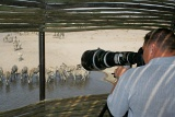 Photographer-hide by Photographer at a hide