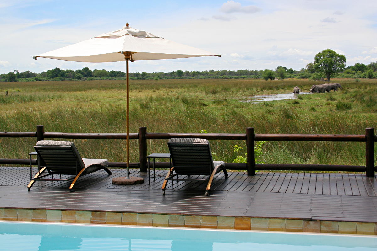 The view from Chief's camp in Botswana by