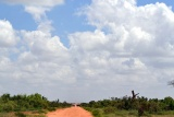 Dirt road Tsavo East National Park, Kenya 2