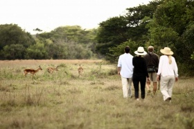 Bush walk at Phinda Game Reserve