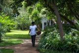 Lush gardens at Plantation Lodge, Karatu