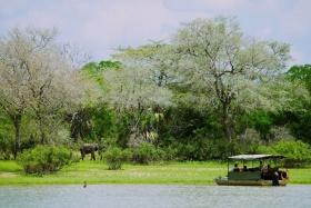 River safari - image by Niels van Gijn