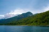 Dense jungle, Mahale Mountains National Park