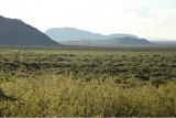 Wide open plains at malaria-free Madikwe Game Reserve