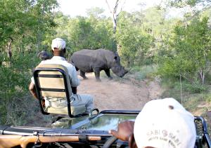 map kruger national park with Kruger National Park on Mykrugerlodge moreover Pilanesberg Map as well Self Driven Safari Kurger National Park together with Londolozi Founders C likewise Maps.